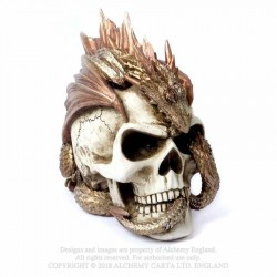 New Release! Alchemy Gothic V72 Dragon Keeper's Skull